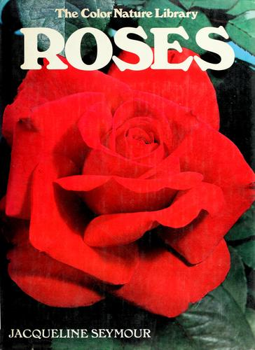 Roses by Jacqueline Seymour